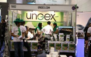 salon-melbourne-mite-test-hairloss-13-960x600_c | Ungex | Demodex