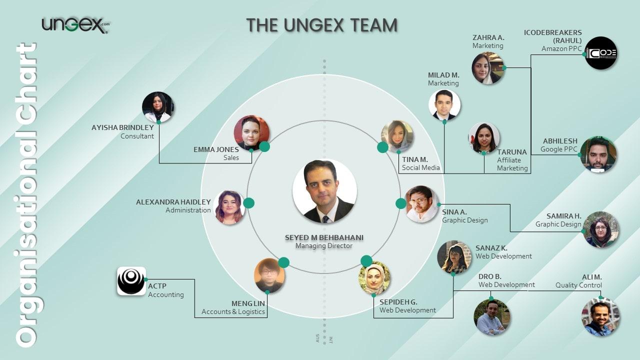 Ungex Organisation Chart