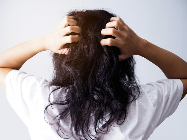 Hair mites | Ungex
