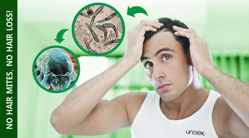 No hair mites, no hair loss!
