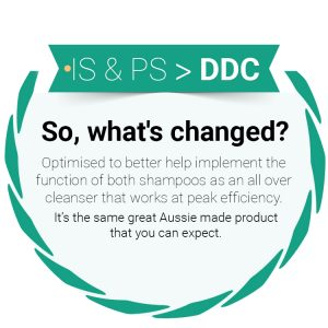 DDC replaces IS and PS