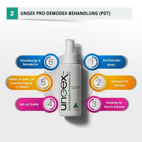 PDT Infographie | Ungex
